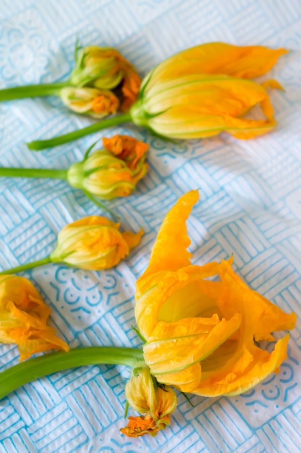 Beautiful courgette or zucchini flowers are a Roman specialty